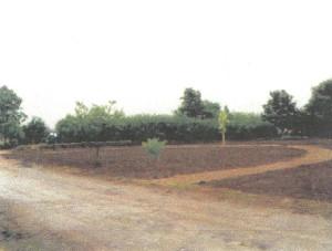 markarbete-augusti-1998